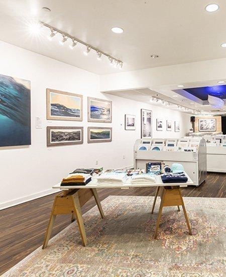 Polu Gallery Exposition