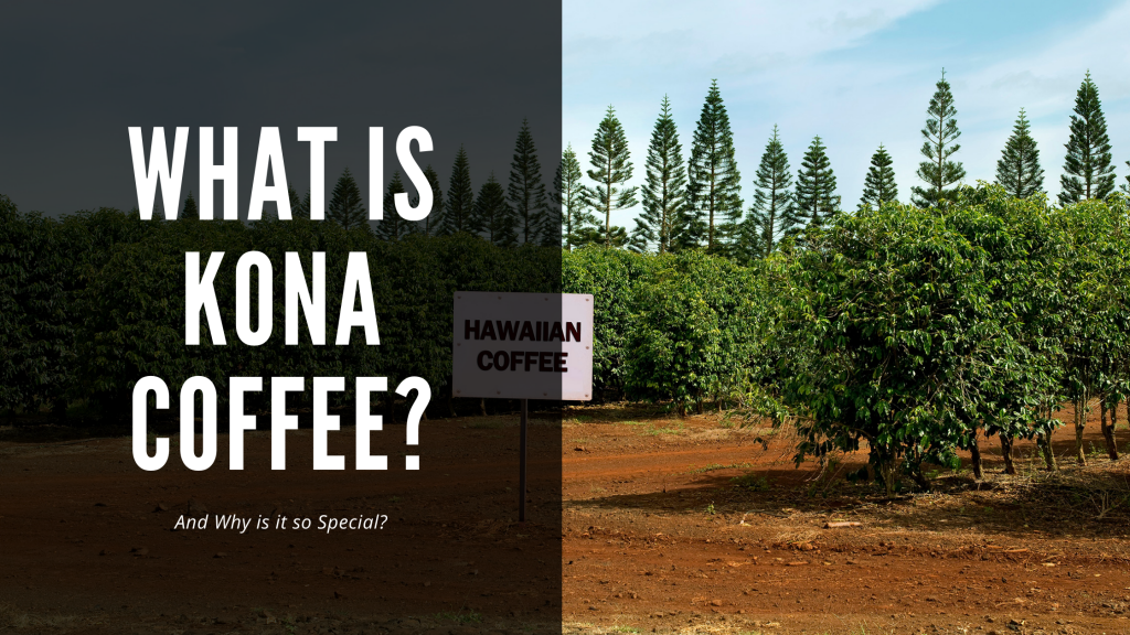 What is Kona Coffee and Why is it Special?